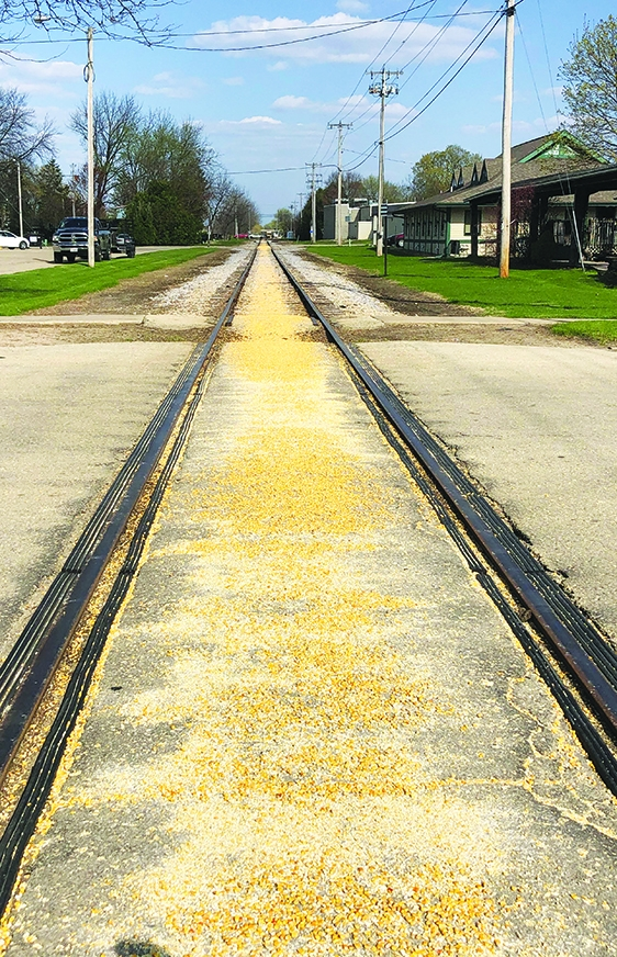 Follow the yellow brick road corn The railroad tracks through Spring Green, and probably beyond, were covered with corn last week. A grain...